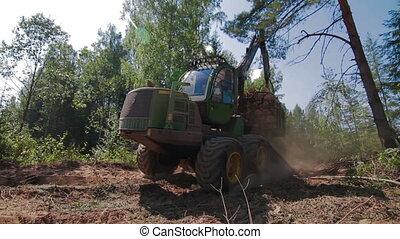 Feller Buncher drives from the forest - Feller Buncher...