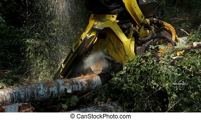 Harvester working in middle of a forest