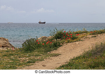 The path to the sea and the ship aground. Cyprus. Pathos. -...