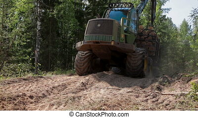 Feller Buncher drives from the forest - Feller Buncher...