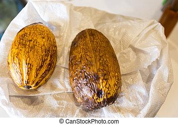 Cocoa pods (cocoa, cacao, pod)