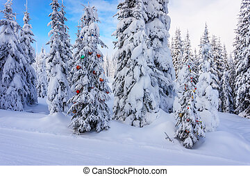 Decorated Christmas Trees in Forest - Christmas decorations...