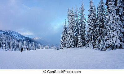 Winter Landscape in the Mountains - Skiing among snow...