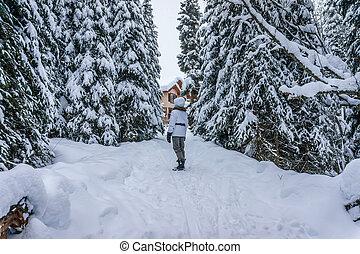 Walking through the Snow - Woman walking through the snow...