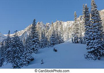 nevado, cena, em, colorado, montanhas,