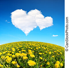Valentines day - Dandelions field and blue sky with a white...