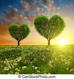Valentines day - Spring meadow with trees in the shape of...
