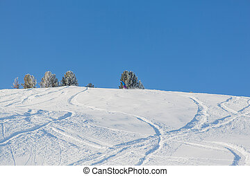 Fresh ski tracks in powder snow - Fresh ski and snowboard...