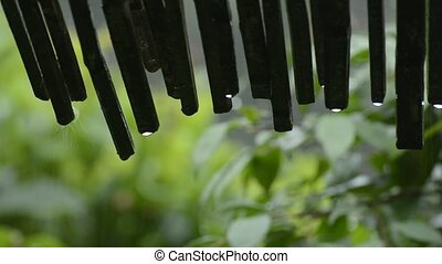 Rain water dripping bamboo eaves in front of green leaves