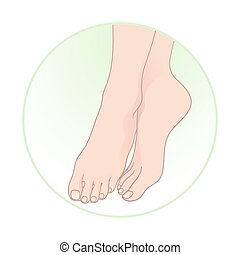 Beautiful female feet Vector
