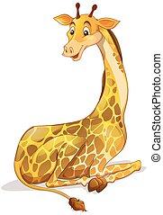 Cute giraffe sitting alone
