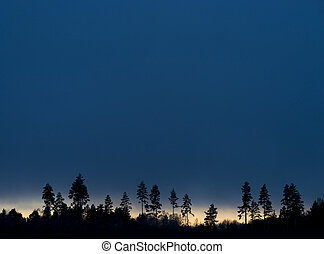 Trees on blue evening sky - Silhouettes of trees on blue...