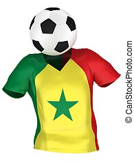 National Soccer Team of Senegal | All Teams Collection |