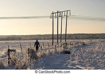 campo, andar, Inverno, homem