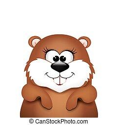 groundhog, day., marmotta, su, bianco, fondo.,