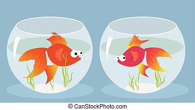 Love at first sight - Cartoon goldfish smitten by a girl...