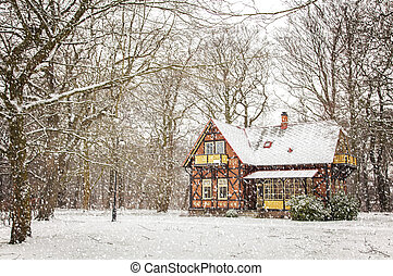 House in falling snow - Snowy christmas card scene with...