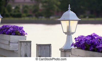 White flashlight and two flowerbed violets in summer day...