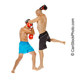 Kickbox fighters sparring isolated on white background full...