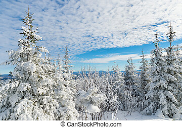 Beautiful snowy landscape in Quebec, Canada - Beautiful...