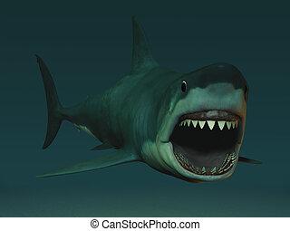 grande, branca, tubarão, Pronto, mordida