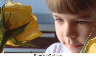Little girl smells roses