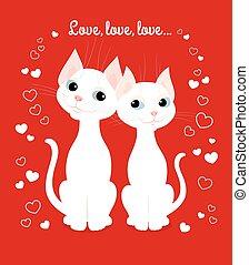 white cats couple