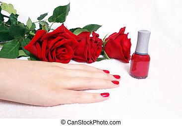 female hands in salon