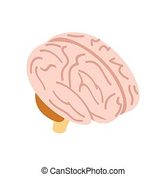 Human brain isometric 3d icon on a white background...