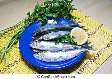 fresco, sardinhas