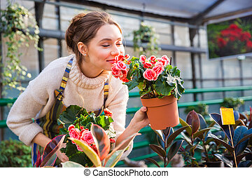 Attractive cute woman gardener smelling pink flowers in pot...