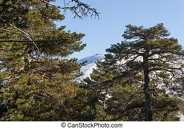 Navacerrada, narta, uciekanie się,