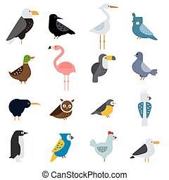 Birds vector set illustration