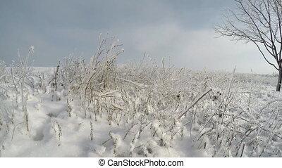 Snow January