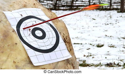 target and arrow shooting process