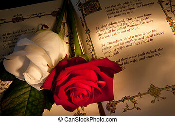 Adam and Eve\'s wedding text - Roses and bible with Genesis...