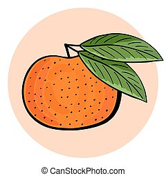 Hand drawn tangerine with green leaves. Vector tangerine...