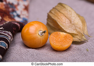 physalis on a gray