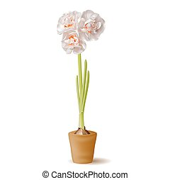Realistic daffodil flower in the pot