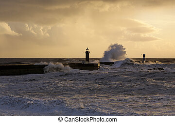 Stormy sea waves at winter sunset - Wide view of big stormy...
