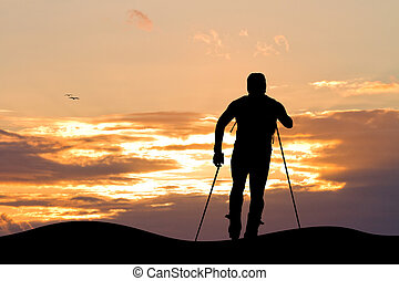 cross country skiing - illustration of cross country skiing