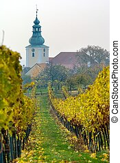 church in autumnal wineyard - View of church in autumnal...