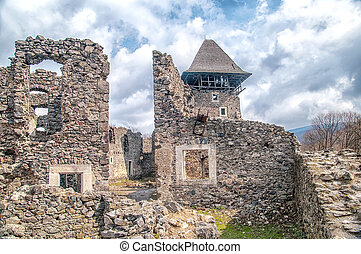 Castle in village Nevicke, Ukraine - Nevitsky Castle ruins...