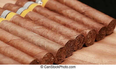 The Cuban cigars, hand made Close up