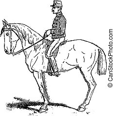 Rassembler, an exercise meant to increase mobility of the horse while training, vintage engraving.