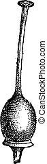 Style or Gynoecium, vintage engraving - Style or Gynoecium,...