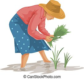 Vector of woman working in farm. - Vector illustration of...