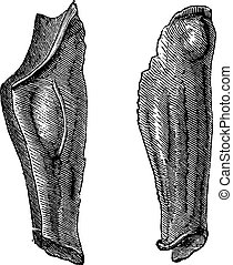 Armor leg of tin or Flexible greaves vintage engraving