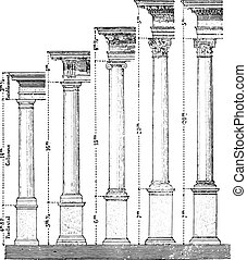 Five orders of Architecture, vintage engraving.