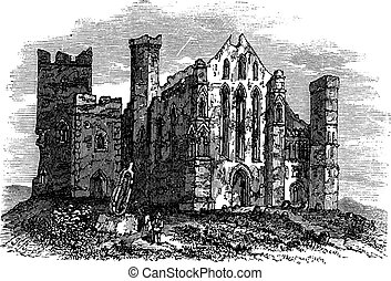 Rock of Cashel or Cashel of the Kings, Ireland vintage engraving